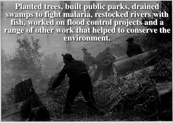 Planted trees, built public parks, drained swamps to fight malaria, restocked rivers with fish, worked on flood control projects and a range of other work that helped to conserve the environment.