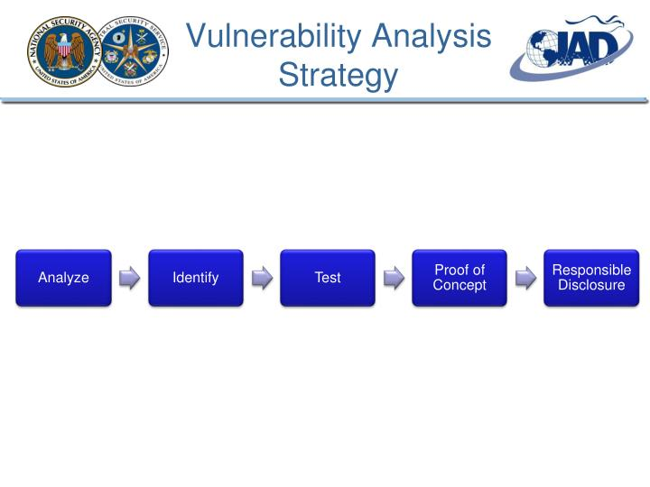Vulnerability Analysis Strategy