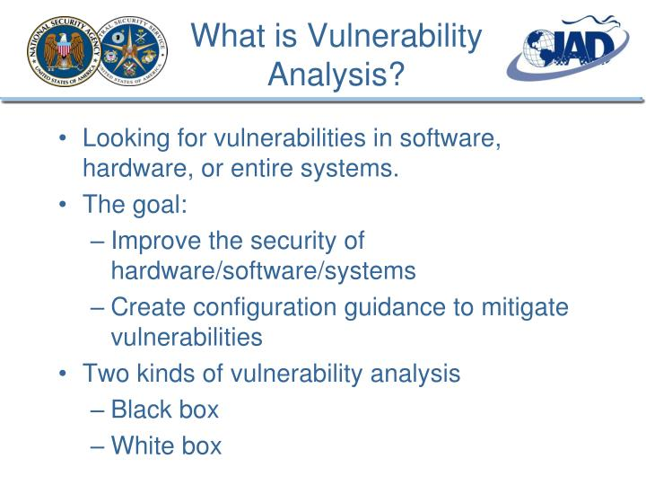 What is Vulnerability Analysis?