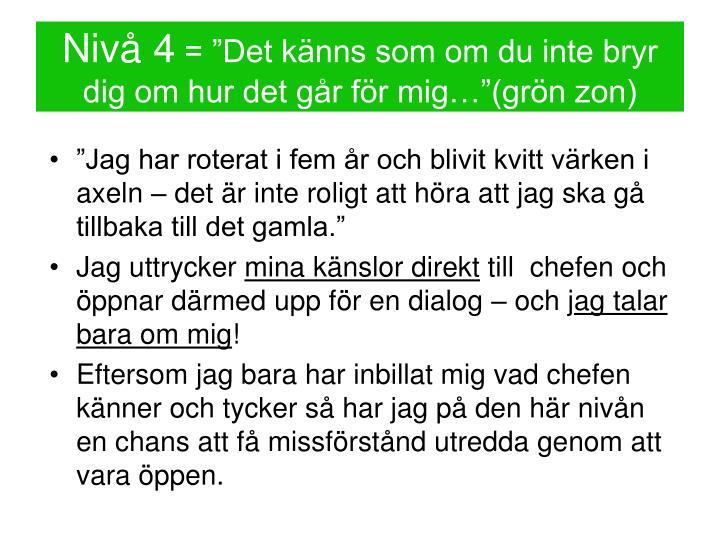 Nivå 4
