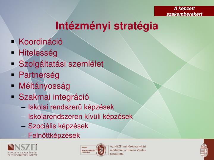 Intézményi stratégia