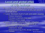 local and global effect of co 2 leakage