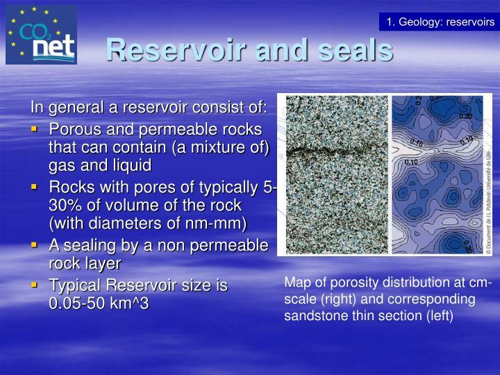 Reservoir and seals