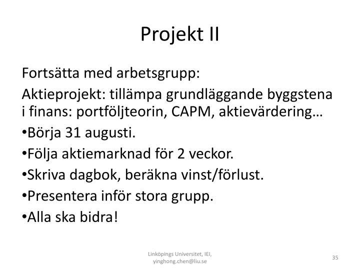 Projekt II
