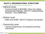 savvy s organisational structure