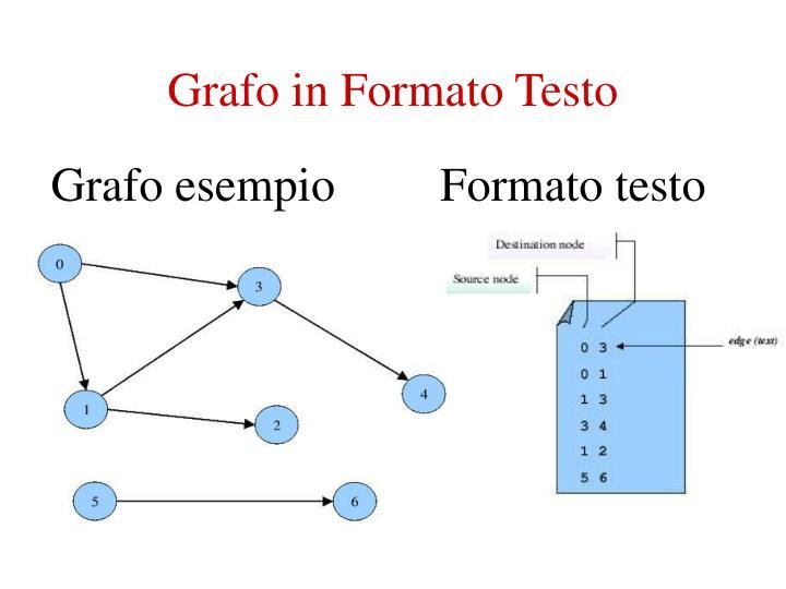 Grafo in Formato Testo