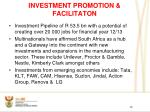 investment promotion facilitaton