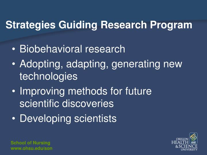 Strategies Guiding Research Program