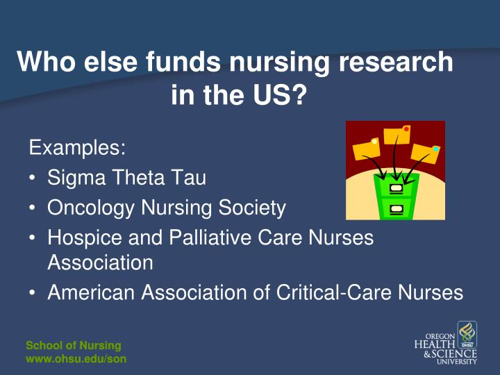 Who else funds nursing research