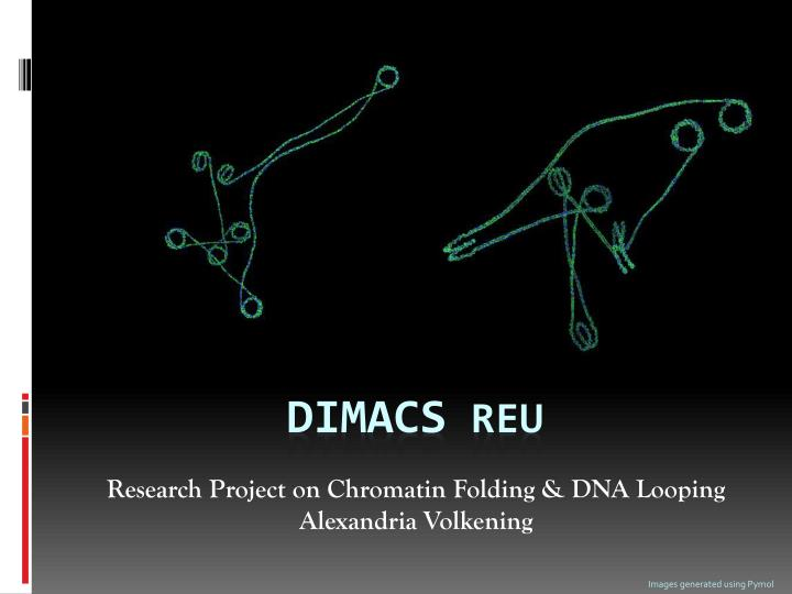Research project on chromatin folding dna looping alexandria volkening