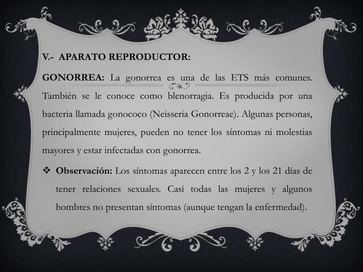 V.-  APARATO REPRODUCTOR: