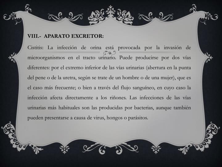 VIII.-  APARATO EXCRETOR: