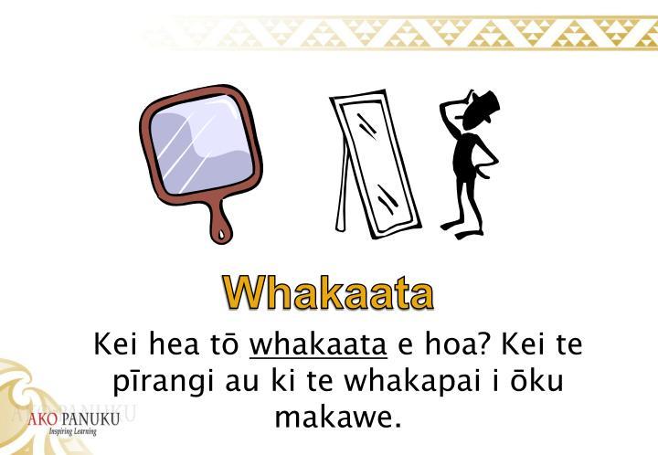 Whakaata