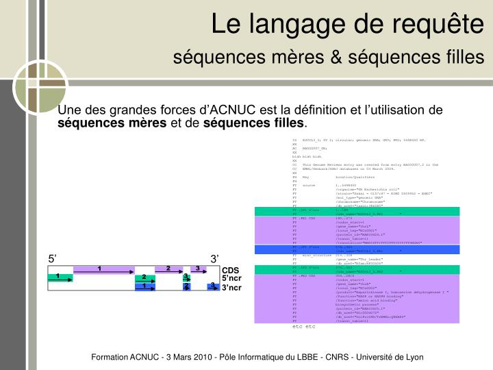 ID   ESCOL3_3; SV 2; circular; genomic DNA; GRV; PRO; 5498450 BP.