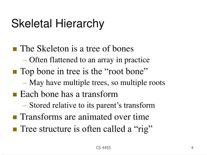 Skeletal Hierarchy