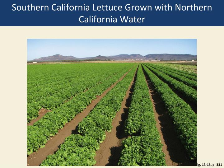 Southern California Lettuce Grown with Northern California Water