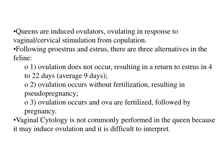 Queens are induced ovulators, ovulating in response to vaginal/cervical stimulation from copulation.