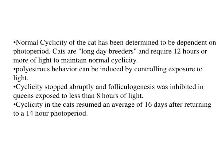 "Normal Cyclicity of the cat has been determined to be dependent on photoperiod. Cats are ""long day breeders"" and require 12 hours or more of light to maintain normal cyclicity."