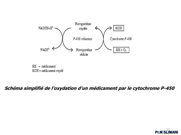 Schéma simplifié de l'oxydation d'un médicament par le cytochrome P-450