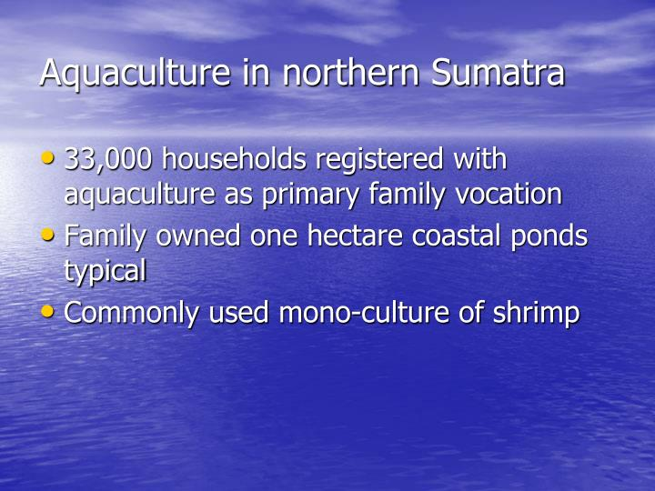 Aquaculture in northern sumatra