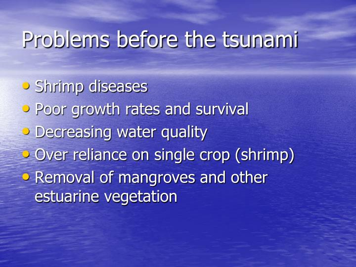 Problems before the tsunami