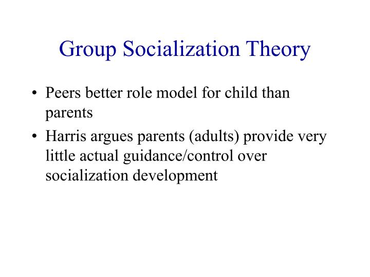 Group Socialization Theory