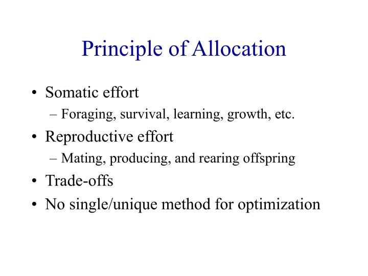 Principle of Allocation