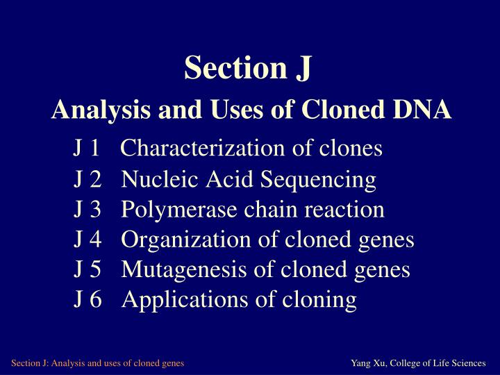 characterization of nucleic acids essay