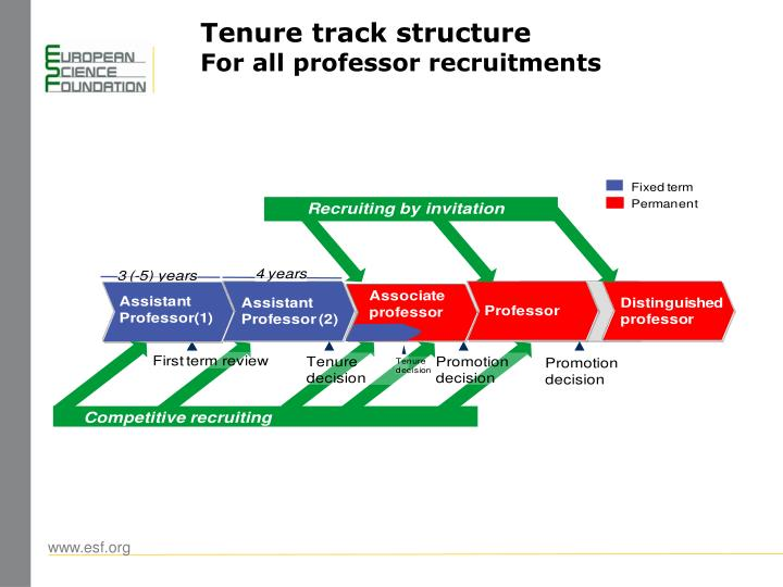 Tenure track structure