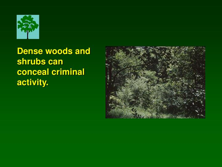 Dense woods and shrubs can conceal criminal activity.
