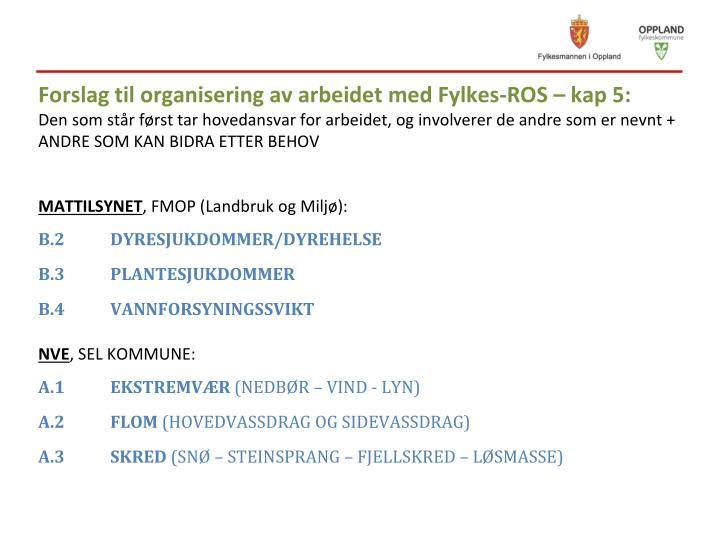 Forslag til organisering av arbeidet med Fylkes-ROS –