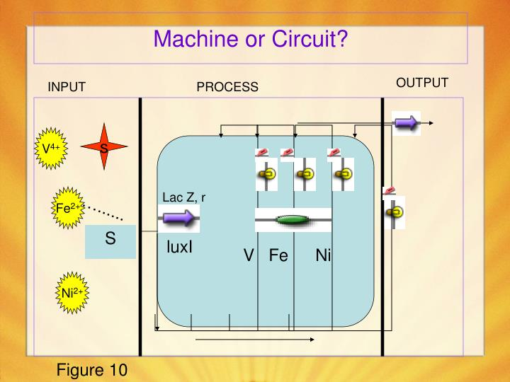 Machine or Circuit?