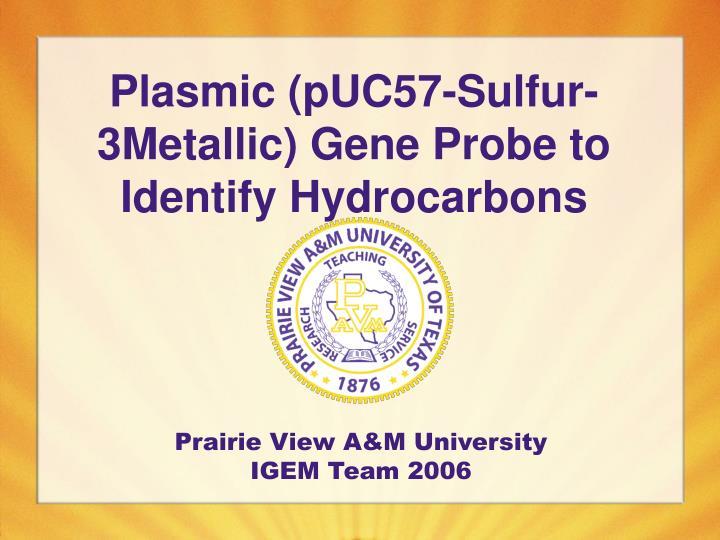Plasmic (pUC57-Sulfur-3Metallic) Gene Probe to Identify Hydrocarbons