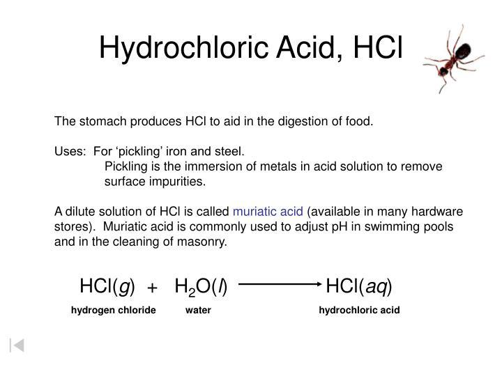 Ppt Common Acids Powerpoint Presentation Id 4697679