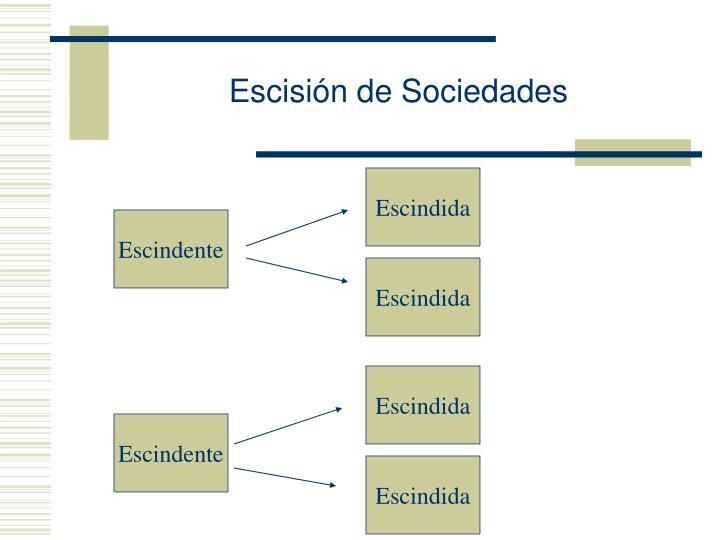 Escisión de Sociedades