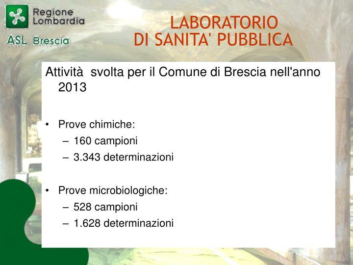 Attività  svolta per il Comune di Brescia nell'anno 2013