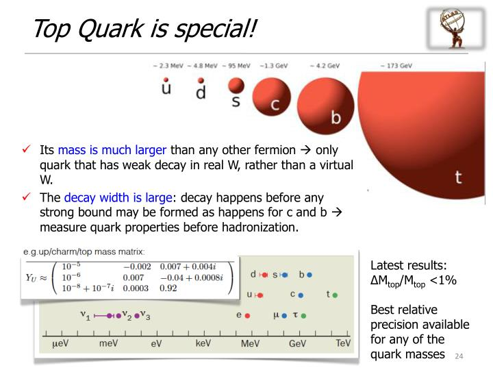 Top Quark is special!