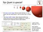 top quark is special