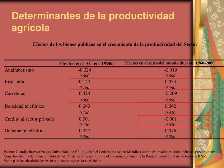 Determinantes de la productividad agrícola