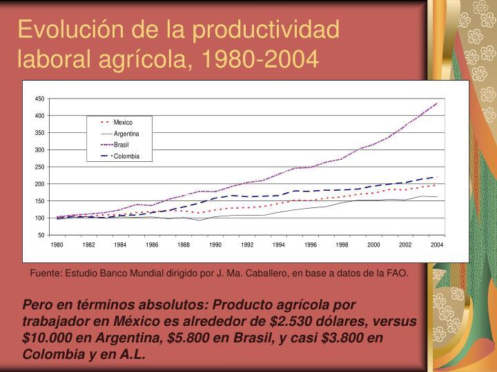 Evolución de la productividad laboral agrícola, 1980-2004