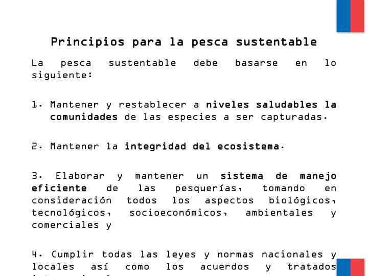 Principios para la pesca sustentable