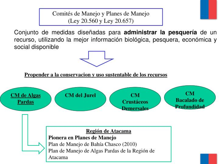 Comités de Manejo y Planes de Manejo
