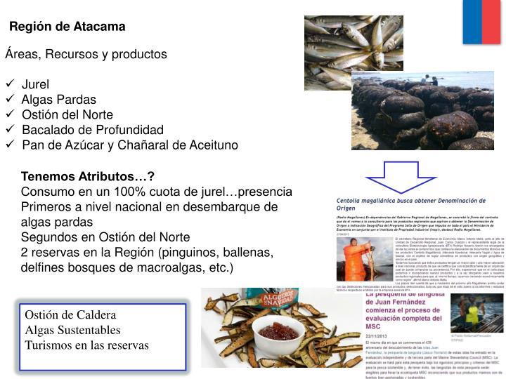 Región de Atacama