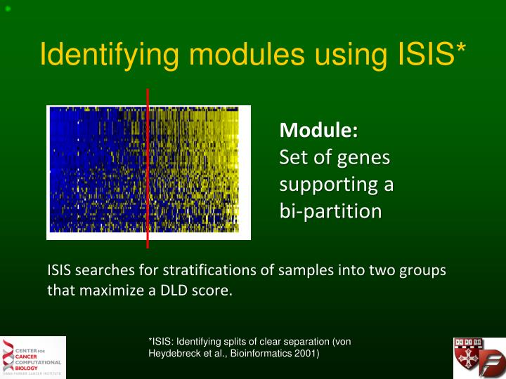 Identifying modules using ISIS*