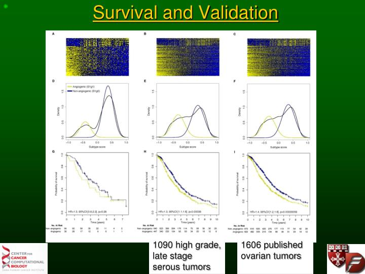 Survival and Validation