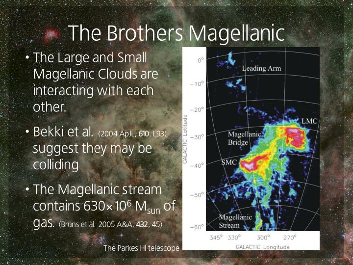 The Brothers Magellanic