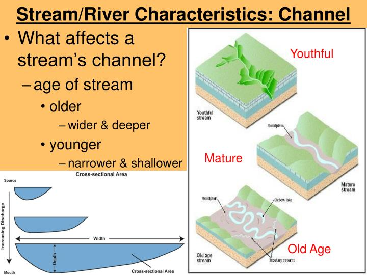 Stream/River Characteristics: Channel