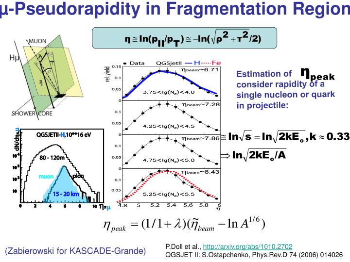 µ-Pseudorapidity in Fragmentation Region