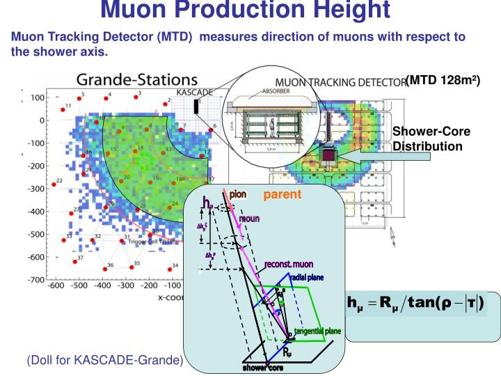Muon Production Height