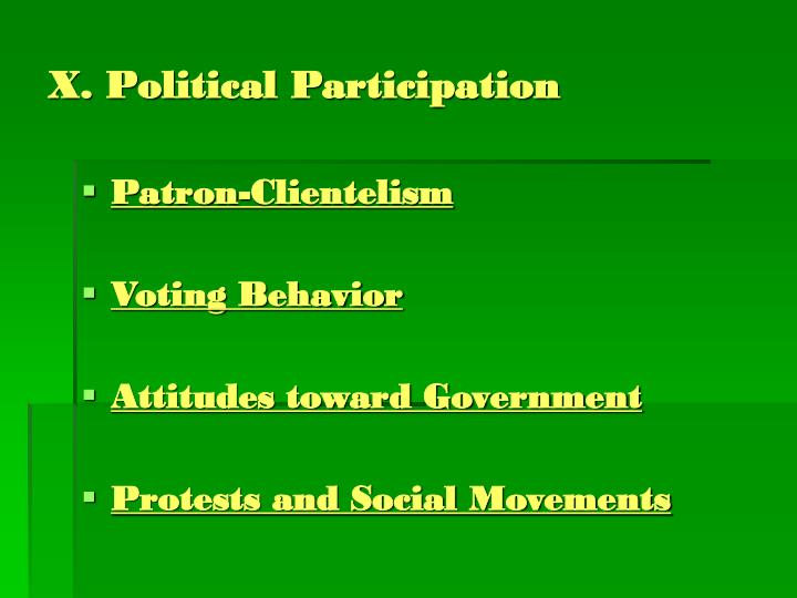 X. Political Participation
